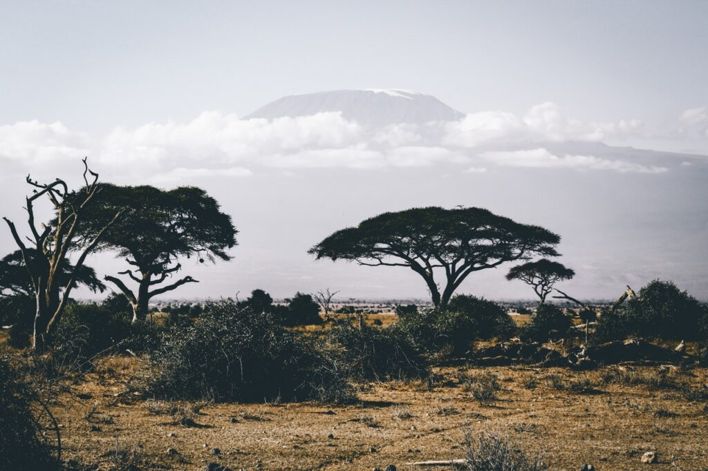 mooiste safari bestemmingen